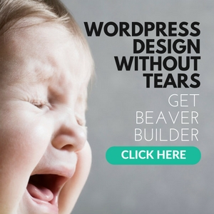 Stop struggling with WordPress design